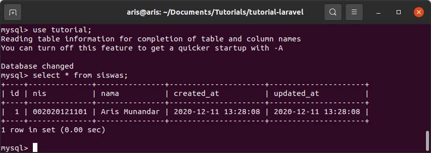 dummy database
