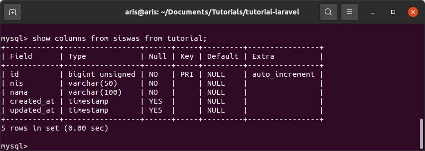 Kolom database table di mysql laravel
